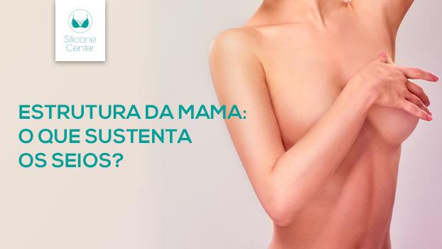 Aumento da mama feminina: o que sustenta os seios?